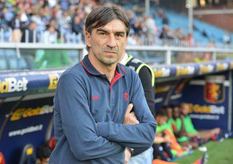 Juric, attuale tecnico del Genoa (Getty Images)